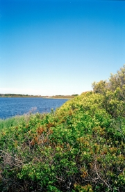 Nantucket Horizon Series #15