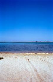 Nantucket Horizon Series #8